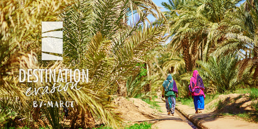 Destination Evasion Specialist Travel Agent in Morocco
