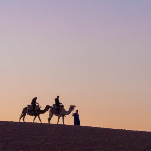Sunset camel ride Terre des Etoiles