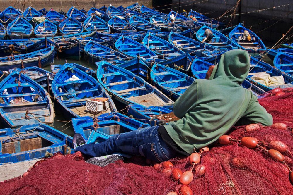 City Trek Essaouira