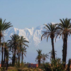 Découverte de Marrakech en side car