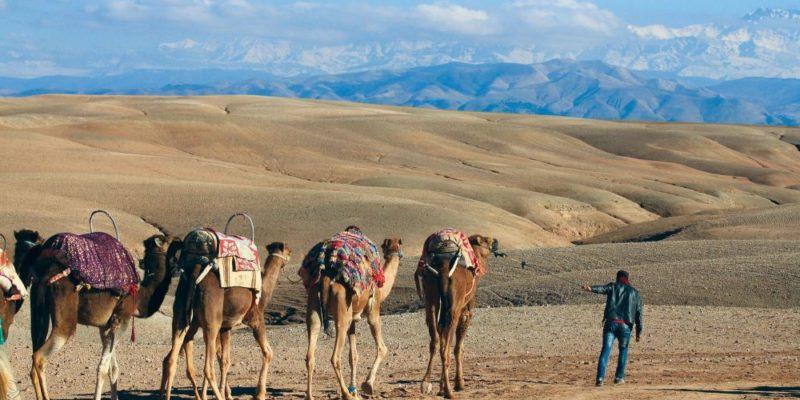 Enterrement de vie de jeune fille dans le désert