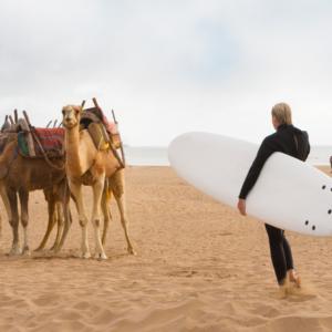 Journée Surf dans les vagues de l'Atlantique