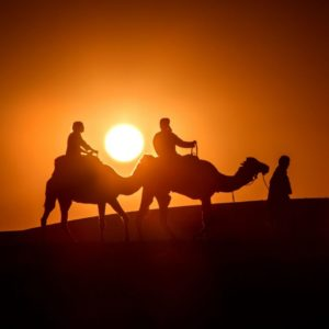 Rando chamelière dans les dunes du Sahara