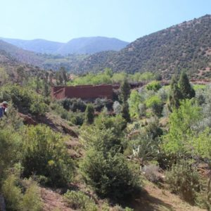 Randonnee haut atlas maroc destination evasion