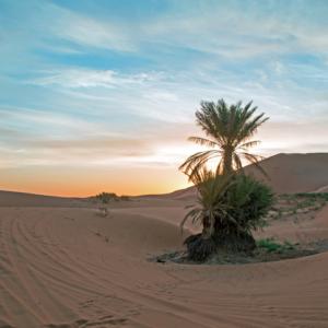 Temps du Sud Desert Sahara Maroc