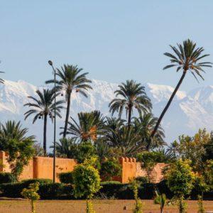 Visite des jardins de Marrakech