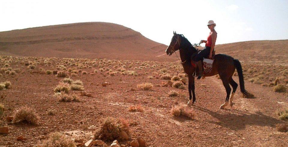 cheval Agafay