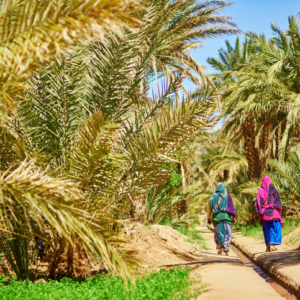 Anti Atlas Sud Maroc Oasis Destination Evasion