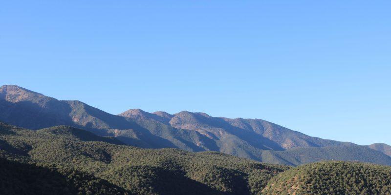 Atlas Mountain Family trip patrick-ogilvie