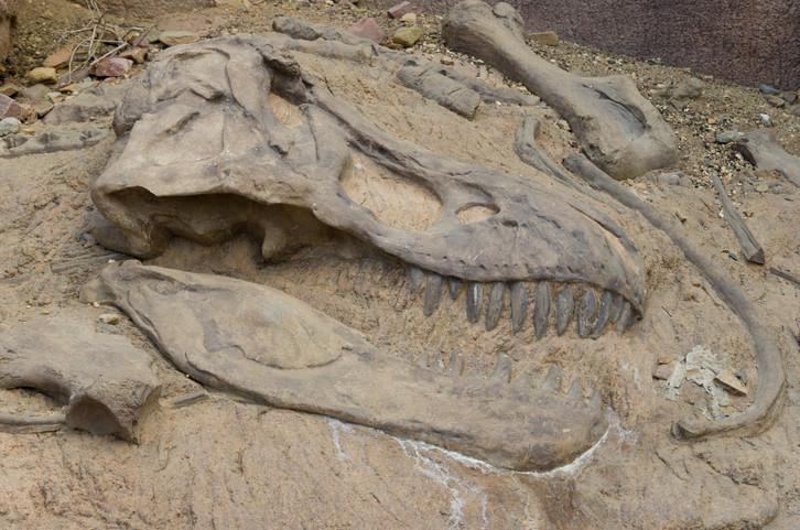dinosaure Montagne en famille Maroc
